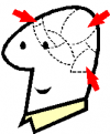 clipart omino con testa divisa in aree